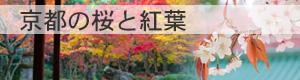 京都の桜と紅葉