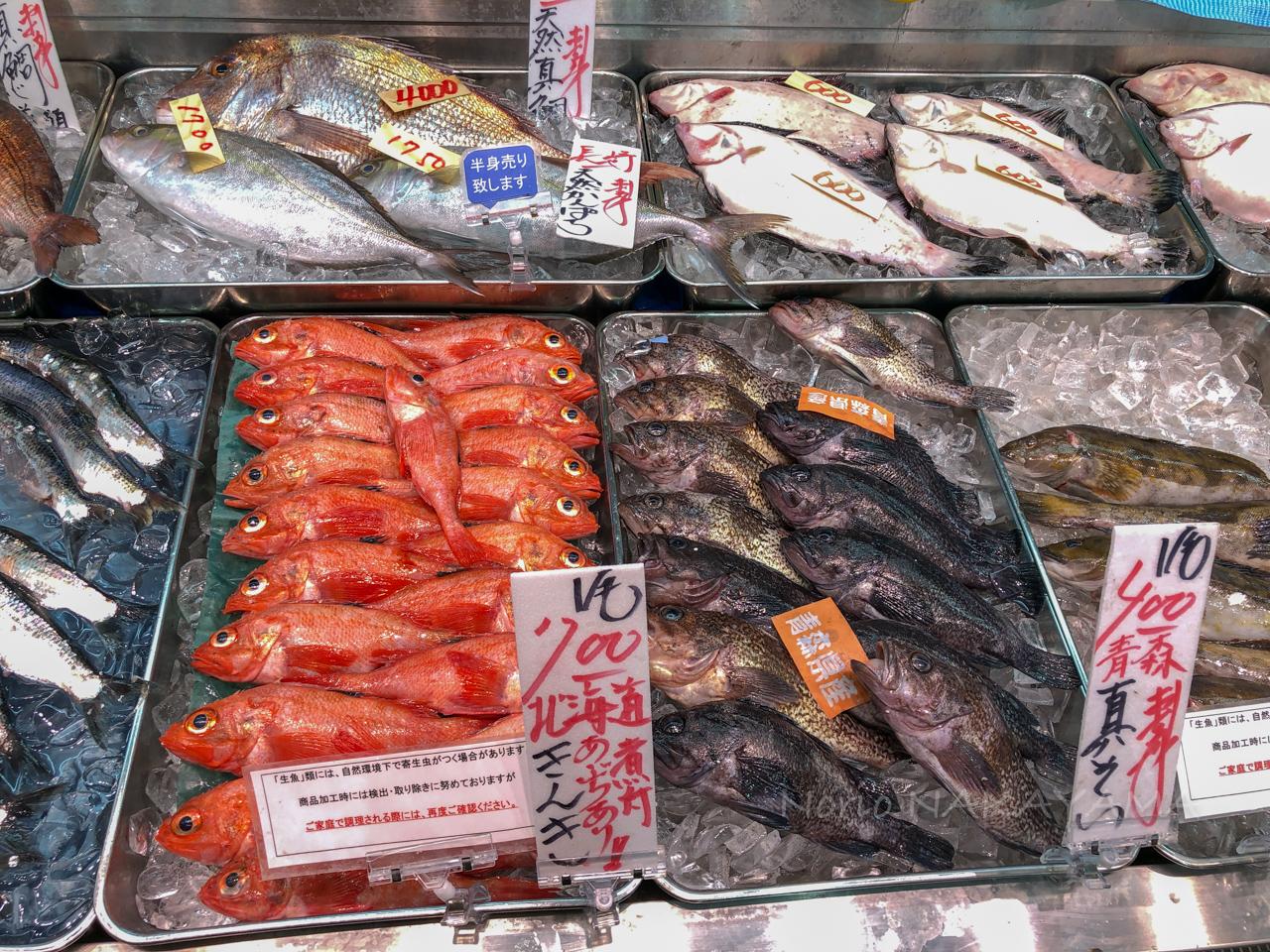 角上魚類 R・GENKI あまいけ さいたま